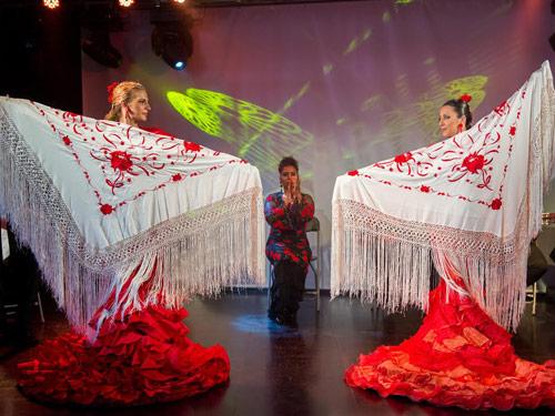imagen de Espectáculo de Arte Flamenco